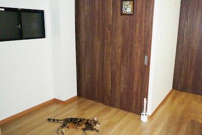新居のトイレの明かり取り窓に「スクウェア」を設置した事例 (東京都江戸川区 M様)